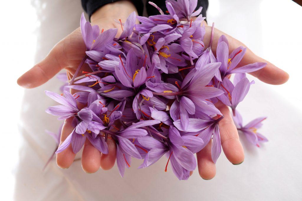 مربای گلبرگ زعفران و خواص گل زعفرون